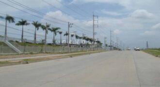 Land for Sale : Well Grow Industrial Estate, Bangna-Trad Road km. 36, Bangpakong, Chachoengsao