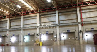 Warehouse for Rent : Wellgrow Industrial Estate, Eastern Economic Corridor (EEC Zone), Chachoengsao