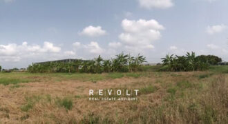 Vacant Land for Sale : Zone Factory & Warehouse – Purple Zone, Bangna Trad Km. 39 road, Chachonesao